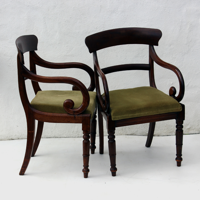 antique chair salesw, buy antique chairs, william IV carver, antique  mahogany chairs - Pair Of William IV Mahogany Carvers - OldChairs.ie